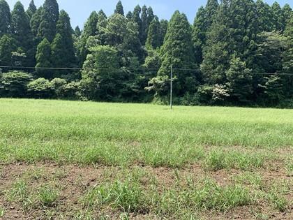 鹿児島県霧島市福山町売土地599坪¥300万円